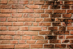 Brick block wall background Stock Photography