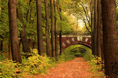 Brick bridge in the autumn forest. In Russia Royalty Free Stock Photography