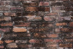 Brick and cement wall. Stock Photography