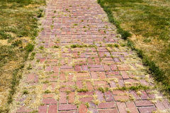 Brick Color Walkway Stock Photos
