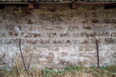 Brick concrete wall and grass Royalty Free Stock Photo