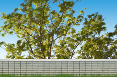 Brick fence and big tree Royalty Free Stock Photo