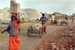 Brick field in West Bengal-India Royalty Free Stock Photo