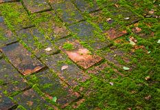 Brick floor Royalty Free Stock Photos