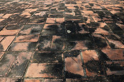 Brick floor Background of Temple in Ayutthaya Thailand. Royalty Free Stock Image