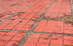 Brick Flooring Grunge Royalty Free Stock Photography