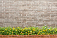Brick and flower Royalty Free Stock Images