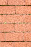 Brick footpath background. Royalty Free Stock Image