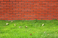 Brick and grass Royalty Free Stock Photos