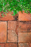 Brick and grass background Royalty Free Stock Photo