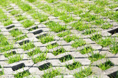 Brick grass path Royalty Free Stock Photos