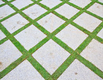 Brick and grass Stock Images