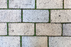 Brick ground texture Royalty Free Stock Images