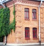 Brick house with ivy. Brick house with ivy on the wall Stock Photos