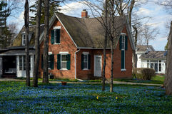 Brick House, Scilla Ground Cover stock images