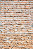 Brick Layer Wall. Bricklayer putting down another row of bricks in site Royalty Free Stock Photos