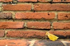 Brick and Leaf Stock Photos