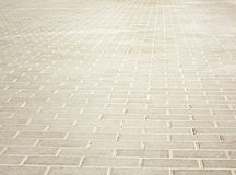 Brick light pavement Royalty Free Stock Image