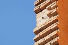 Brick masonry. With sky in the background royalty free stock photo