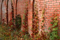 Brick mill in the colors of autumn Royalty Free Stock Images