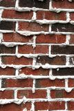 Brick and Mortar Verticle Royalty Free Stock Photo