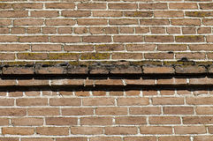 Brick and moss Royalty Free Stock Image