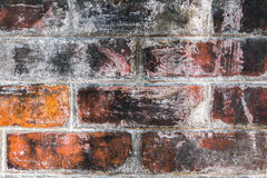Brick old vintage background Royalty Free Stock Images