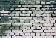 Brick old wall texture with gradient paint green white colors for background Royalty Free Stock Image