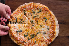 Brick Oven Pizza. New York Style Pizza topped with fresh basil Stock Photography