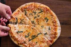 Brick Oven Pizza Stock Photography