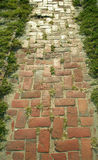 Brick path Stock Image