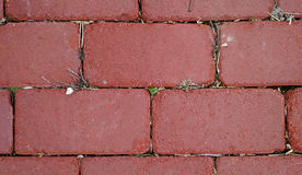 Brick Path Texture. Red brick walkway/patio texture, background and wallpaper Royalty Free Stock Image