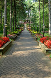 Brick pathway. A brick pathway lined with flower boxes at a rustic resort Royalty Free Stock Images