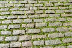 Brick pathway Royalty Free Stock Photography