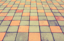 Brick pathway colorful in the park Royalty Free Stock Images