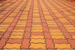 Brick pathway colorful in the park Royalty Free Stock Photo