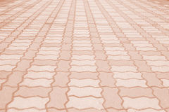 Brick pathway colorful in the park Royalty Free Stock Photos