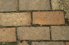 Brick Patio Path Royalty Free Stock Images