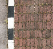 Brick pavement Royalty Free Stock Photo
