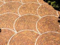 Brick pavement pattern. A circular brick pattern set in a walk way Stock Photography