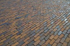 Brick pavement texture Stock Image