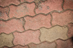 Brick pavement tile, texture as background. Stock Image