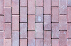Brick pavement tile, top view. Texture as background. Stock Images