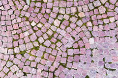 Brick pavement tile, top view. Texture as background. Royalty Free Stock Photos
