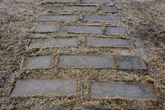 Brick paving Stock Photography