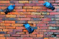 Brick and pigeons Royalty Free Stock Images
