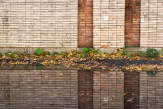 Brick reflection. Reflection of brick wall and autumn leaves in puddle Stock Image