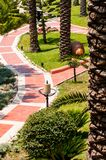 Brick road. With palm trees Royalty Free Stock Photography