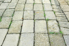 Brick road background Royalty Free Stock Photography