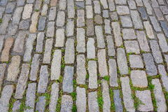 Brick road. A beautiful brick road in water front park in Boston Royalty Free Stock Image
